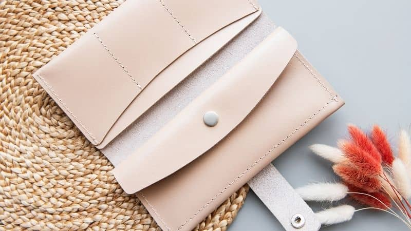 Best Small Wallet for Women in India